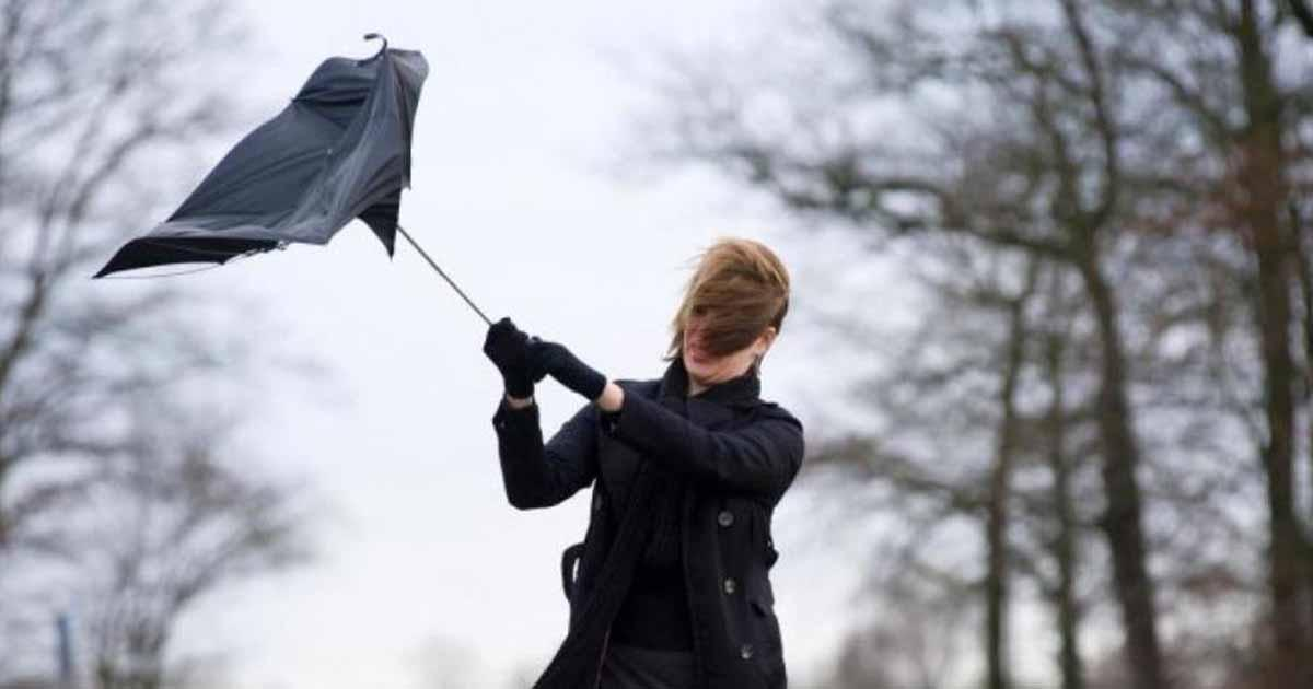 Up to 30 MPH Winds Expected in Worcester on Sunday