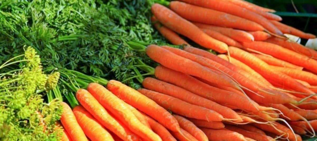 Here's this Week's Canal District Farmers Market Lineup – August 10