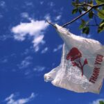 Worcester City Council Preview: Plastic Bags, PILOT Program, and Problem Properties